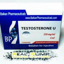 Testosterone U (Balkan)